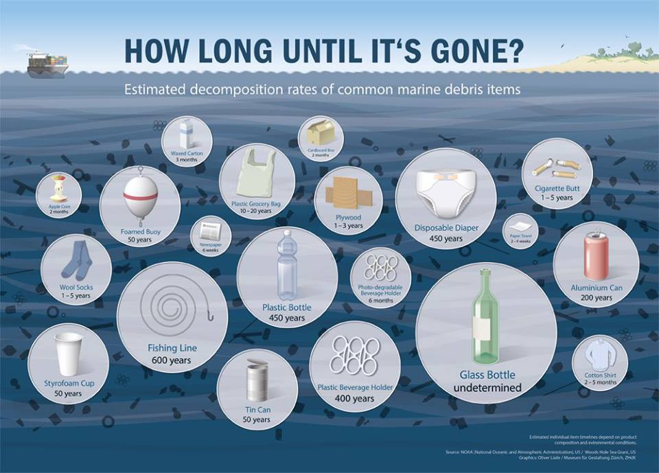 Image result for plastic pollution poster